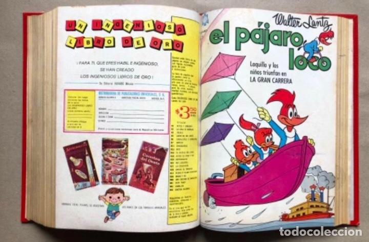 Tebeos: TOMO CON 20 TEBEOS EDITORIAL NOVARO (1965/66). TOM Y JERRY, SÚPER RATÓN, PERIQUITA, PÁJARO LOCO,... - Foto 19 - 210799461