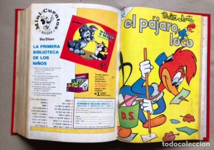 Tebeos: TOMO CON 20 TEBEOS EDITORIAL NOVARO (1965/66). TOM Y JERRY, SÚPER RATÓN, PERIQUITA, PÁJARO LOCO,... - Foto 22 - 210799461