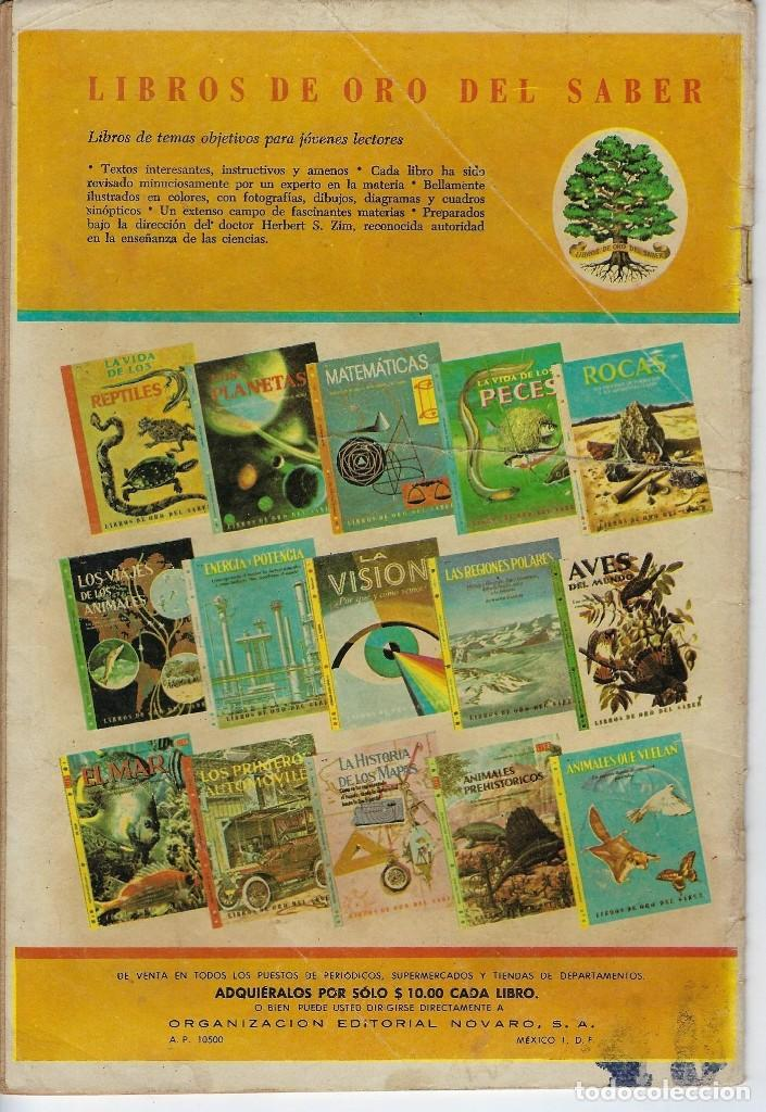Tebeos: DOMINGOS ALEGRES: EL CORREDOR MOD - AÑO XVIII - Nº 913 - NOV. 21 DE 1971 ** EDITORIAL NOVARO ** - Foto 2 - 211645523