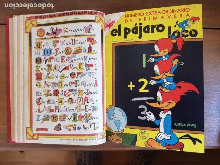 Tebeos: LOTE 10 TEBEOS/CÓMIC TOMO ORIGINAL PORKY EL PÁJARO LOCO EXTRA 1954 PRIMAVERA (5) YUMBO 1952 NOVARO - Foto 9 - 219845408