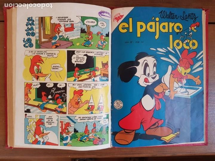 Tebeos: LOTE 8 TEBEOS/CÓMIC TOMO ORIGINAL PORKY EL PÁJARO LOCO 1954 (6) NOVARO ENCUADERNADO - Foto 9 - 219867390