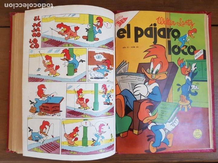 Tebeos: LOTE 8 TEBEOS/CÓMIC TOMO ORIGINAL PORKY EL PÁJARO LOCO 1954 (6) NOVARO ENCUADERNADO - Foto 11 - 219867390