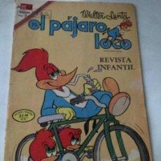 Tebeos: PAJARO LOCO - NUM.446- 1974. Lote 220090972