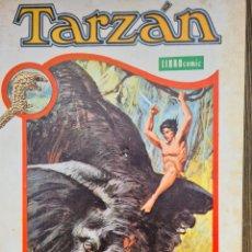 Tebeos: TARZAN TOMO X NOVARO. Lote 243129870