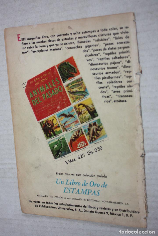 Tebeos: VIDAS ILUSTRES Nº 49 - SCHWEITZER, MEDICO DE LA SELVA - AÑO 1959 - ED. NOVARO . - Foto 2 - 251946270