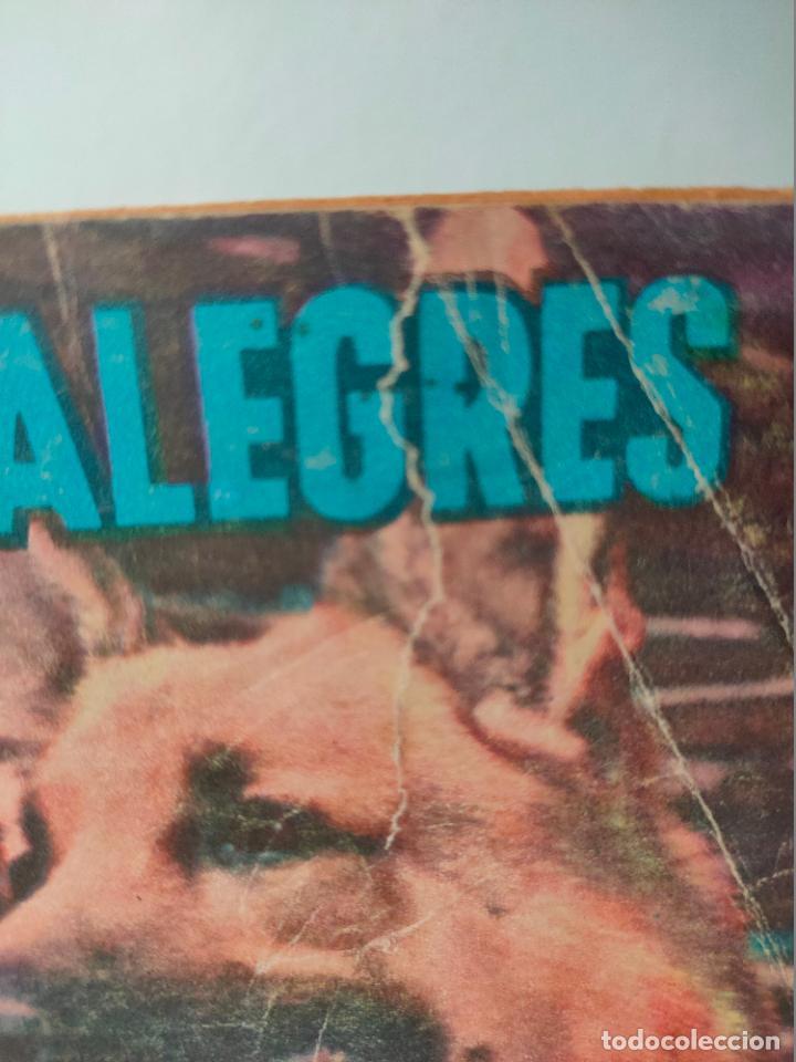 Tebeos: Novaro. Domingos alegres. Rin Tin Tin. 311. 1960 - Foto 3 - 256028505