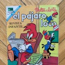 Tebeos: EL PÁJARO LOCO Nº 311 - BUEN ESTADO. Lote 271019833