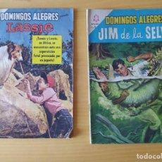 Tebeos: LOTE DOS COMIC, DOMINGOS ALEGRES, AÑO 1964. Lote 277720138