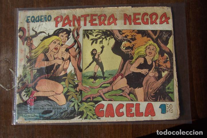 MAGA, PANTERA NEGRA 125, ES Nº 1 2º FORMATO PEQUEÑO P. N. (Tebeos y Cómics - Números 1)