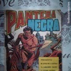 Tebeos: PANTERA NEGRA REVISTA Nº 1. Lote 183499238