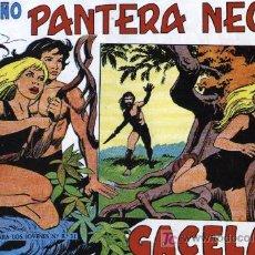 Pequeño Pantera Negra (Apaisada) - 204 Ejemplares, nº 125 al 329 (Colección Completa, Reedición)