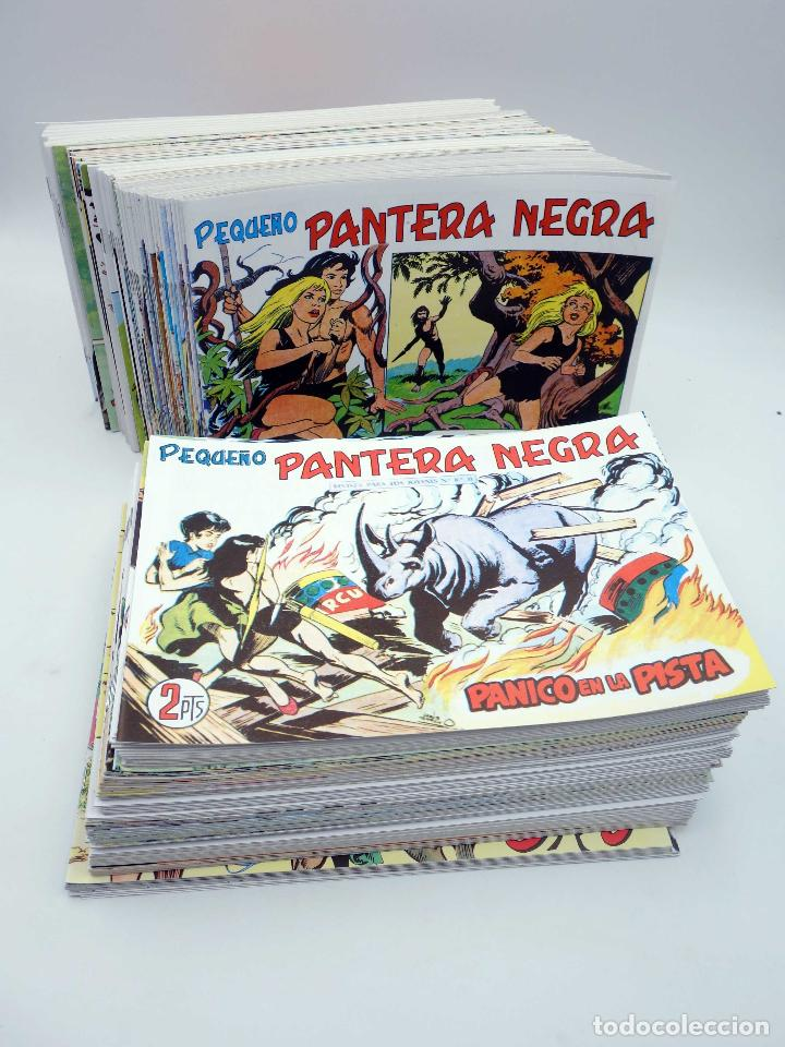 PANTERA NEGRA SEGUNDA 125 A 329. COMPLETA 205 NºS. MAGA (P. Y M. QUESADA) 1980. FACSIMIL. OFRT (Tebeos y Comics - Tebeos Reediciones)