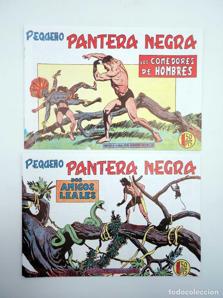Tebeos: PANTERA NEGRA SEGUNDA 125 A 329. COMPLETA 205 NºS. MAGA (P. Y M. Quesada) 1980. FACSIMIL. OFRT - Foto 8 - 174972854