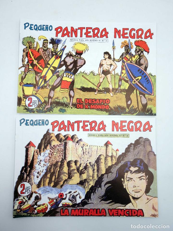 Tebeos: PANTERA NEGRA SEGUNDA 125 A 329. COMPLETA 205 NºS. MAGA (P. Y M. Quesada) 1980. FACSIMIL. OFRT - Foto 9 - 174972854