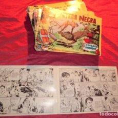 Tebeos: !!ATENCION!!,COLECCION COMPLETA DE PANTERA NEGRA 54 NUM EN REEDICION,( SOLO FALTAN EL 1Y 13 ). Lote 151964554