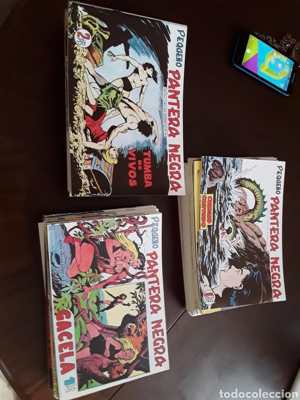 PANTERA NEGRA 125 AL 329 REEDICION, 204 EJEMPLARES (Tebeos y Comics - Tebeos Reediciones)