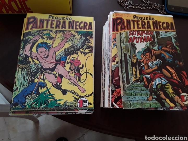 PANTERA NEGRA 55 A 124 REEDICION (Tebeos y Comics - Tebeos Reediciones)