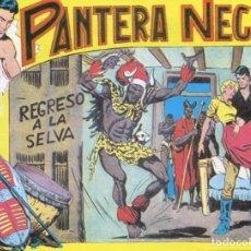 BDs: PANTERA NEGRA Nº 38 / REGRESO A LA SELVA. Lote 190501346