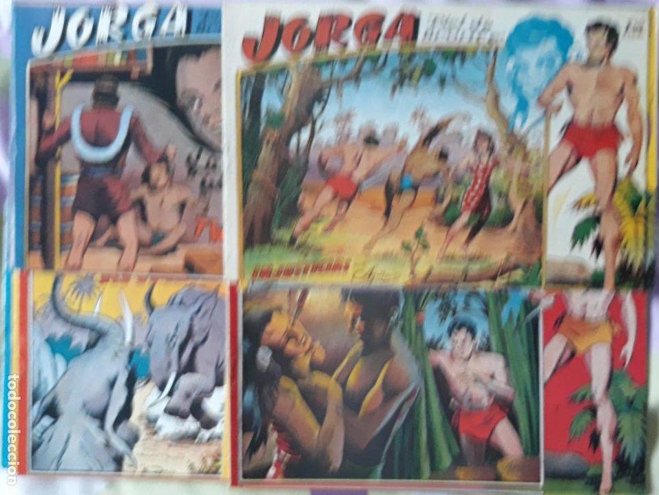JORGA PIEL DE BRONCE, COMPLETA (Tebeos y Comics - Tebeos Reediciones)