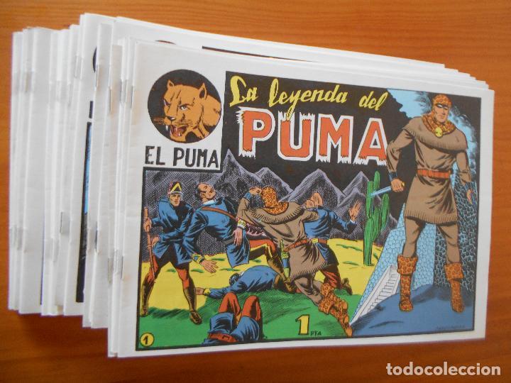 EL PUMA - 1ª SERIE - COMPLETA - 60 NUMEROS - FACSIMIL REEDICION (FW) (Tebeos y Comics - Tebeos Reediciones)