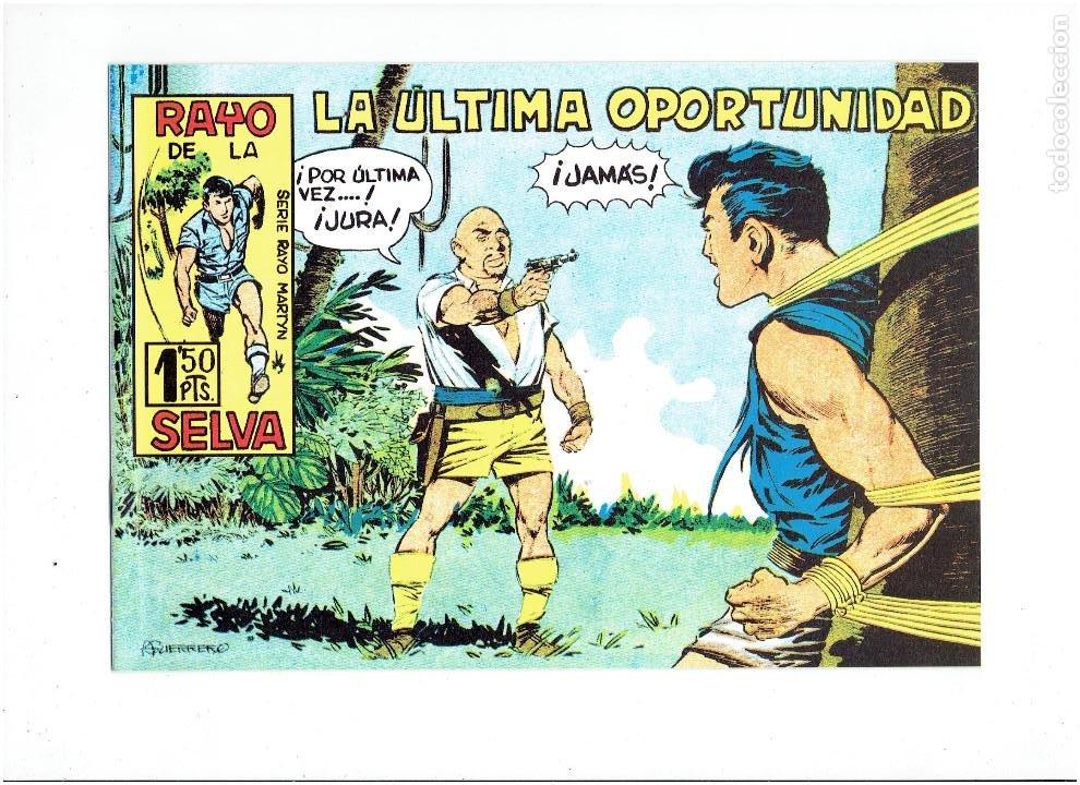 Tebeos: * RAYO DE LA SELVA * COMPLETA 83 NUMEROS * REEDICION EN CAJA * - Foto 5 - 254015830