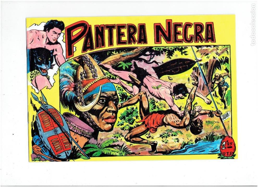 Tebeos: * PANTERA NEGRA * COMPLETA 54 NUMEROS * REEDICION EN CAJA * - Foto 4 - 254030620