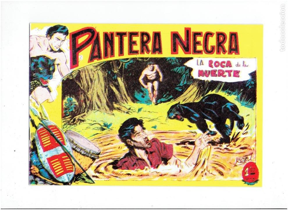 Tebeos: * PANTERA NEGRA * COMPLETA 54 NUMEROS * REEDICION EN CAJA * - Foto 5 - 254030620