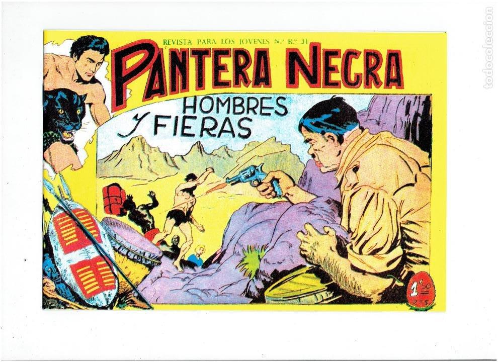 Tebeos: * PANTERA NEGRA * COMPLETA 54 NUMEROS * REEDICION EN CAJA * - Foto 6 - 254030620