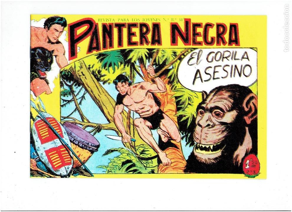 Tebeos: * PANTERA NEGRA * COMPLETA 54 NUMEROS * REEDICION EN CAJA * - Foto 7 - 254030620