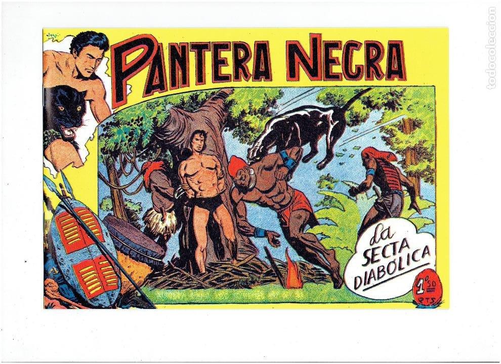 Tebeos: * PANTERA NEGRA * COMPLETA 54 NUMEROS * REEDICION EN CAJA * - Foto 11 - 254030620