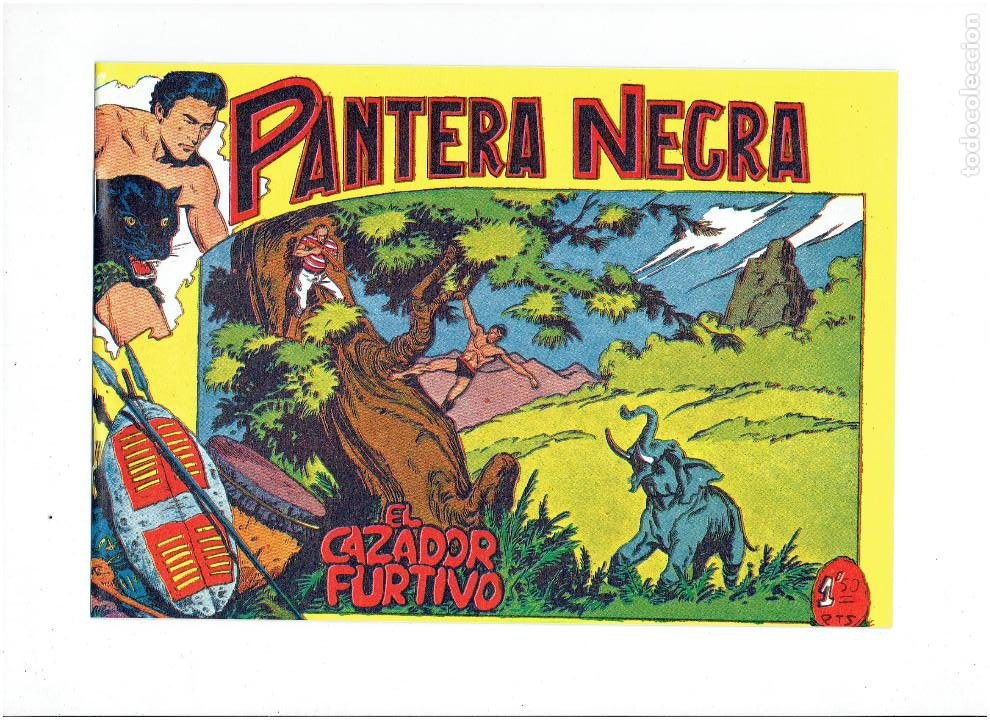 Tebeos: * PANTERA NEGRA * COMPLETA 54 NUMEROS * REEDICION EN CAJA * - Foto 12 - 254030620