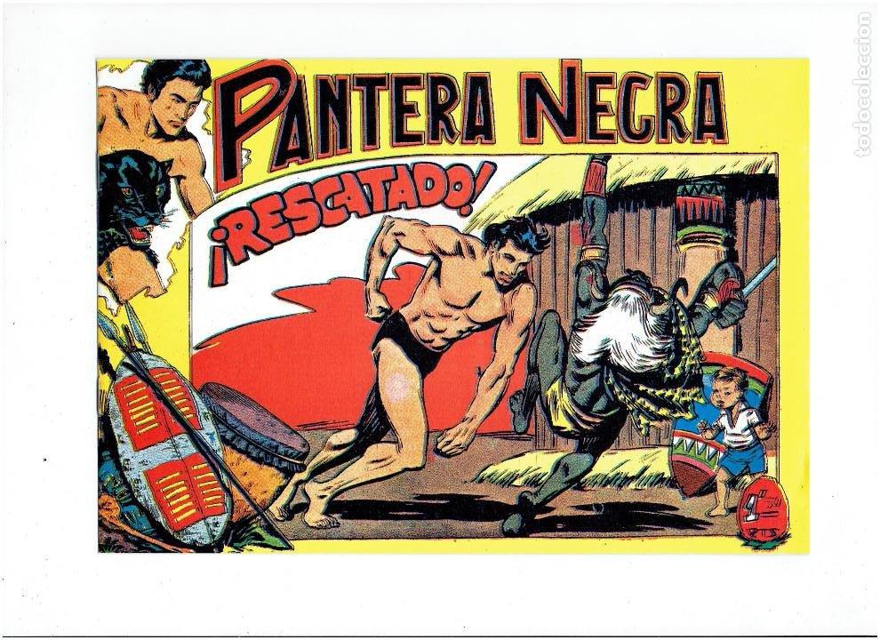 Tebeos: * PANTERA NEGRA * COMPLETA 54 NUMEROS * REEDICION EN CAJA * - Foto 13 - 254030620