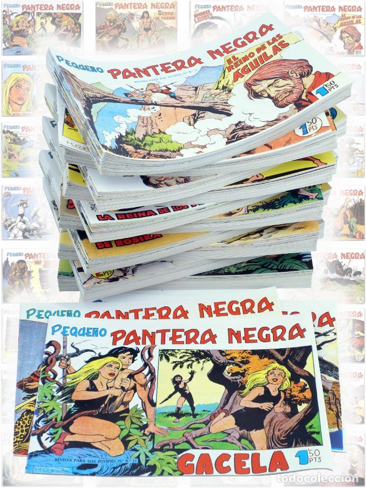PANTERA NEGRA SEGUNDA 125 A 329. COMPLETA 205 NºS. MAGA (P. Y M. QUESADA) CIRCA 1980. FACSIMIL. OFRT (Tebeos y Comics - Tebeos Reediciones)