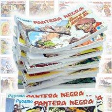 Tebeos: PANTERA NEGRA SEGUNDA 125 A 329. COMPLETA 205 NºS. MAGA (P. Y M. QUESADA) CIRCA 1980. FACSIMIL. OFRT. Lote 259995005