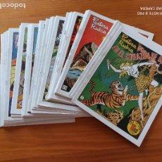 Livros de Banda Desenhada: PANTERA RUBIA COMPLETA - 45 NUMEROS - REEDICION, FACSIMIL (L). Lote 269205638