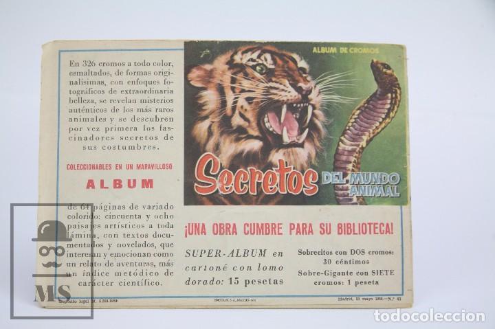 Tebeos: Cómic Mendoza Colt / Un Hechicero Infernal Nº 43 - Ediciones Rollan - Año 1958 - Foto 3 - 102192255