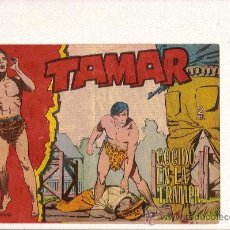 Tebeos: TAMAR Nº132 DE TORAY . Lote 24236273