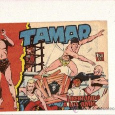 Tebeos: TAMAR Nº23 DE TORAY . Lote 24236289