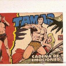 Tebeos: TAMAR Nº19 DE TORAY . Lote 24391587