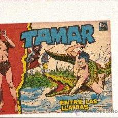 Tebeos: TAMAR Nº10 DE TORAY . Lote 24391593