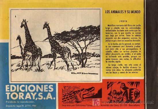 Tebeos: TAMAR - Nº 6 - BORRELL/ACEDO - EDICIONES TORAY 1961 - ORIGINAL, NO FACSIMIL - Foto 2 - 11313487