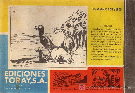 Tebeos: TAMAR - Nº 10 - BORRELL/ACEDO - EDICIONES TORAY 1961 - ORIGINAL, NO FACSIMIL - Foto 2 - 11313470