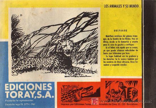 Tebeos: TAMAR - Nº 23 - BORRELL/ACEDO - EDICIONES TORAY 1961 - ORIGINAL, NO FACSIMIL - Foto 2 - 11313453