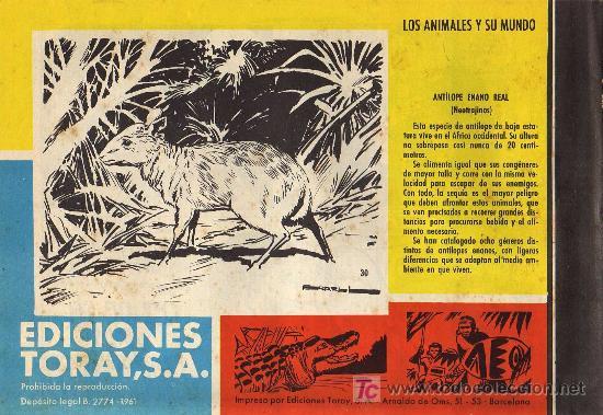 Tebeos: TAMAR - Nº 30 - BORRELL/ACEDO - EDICIONES TORAY 1961 - ORIGINAL, NO FACSIMIL - Foto 2 - 11313437