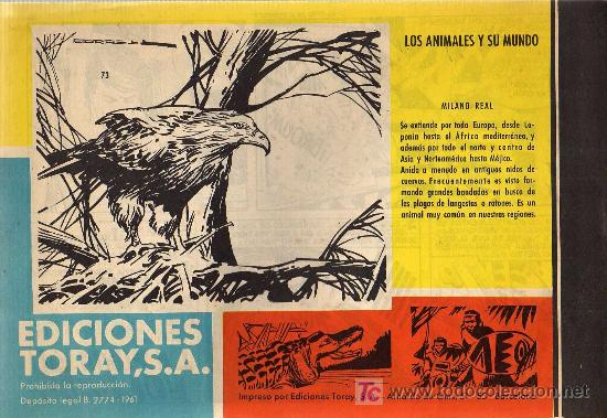 Tebeos: TAMAR - Nº 73 - BORRELL/ACEDO - EDICIONES TORAY 1961 - ORIGINAL, NO FACSIMIL - Foto 2 - 11313424