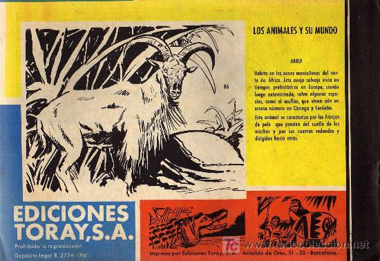 Tebeos: TAMAR - Nº 86 - BORRELL/ACEDO - EDICIONES TORAY 1961 - ORIGINAL, NO FACSIMIL - Foto 2 - 11313415