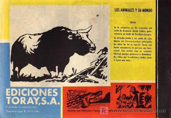Tebeos: TAMAR - Nº 87 - BORRELL/ACEDO - EDICIONES TORAY 1961 - ORIGINAL, NO FACSIMIL - Foto 2 - 11313412