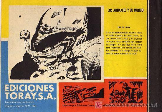 Tebeos: TAMAR - Nº 89 - BORRELL/ACEDO - EDICIONES TORAY 1961 - ORIGINAL, NO FACSIMIL - Foto 2 - 11313408