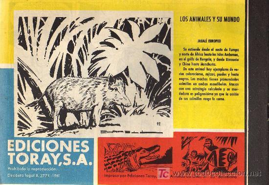 Tebeos: TAMAR - Nº 92 - BORRELL/ACEDO - EDICIONES TORAY 1961 - ORIGINAL, NO FACSIMIL - Foto 2 - 11313392