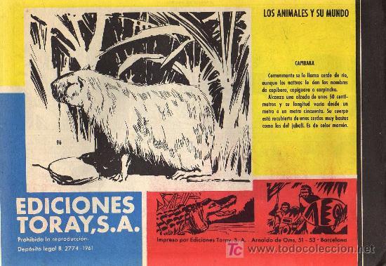 Tebeos: TAMAR - Nº 96 - BORRELL/ACEDO - EDICIONES TORAY 1961 - ORIGINAL, NO FACSIMIL - Foto 2 - 11313386